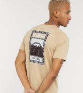 The North Face - Faces - T-Shirt in Hellbraun, exklusiv bei ASOS-Grün