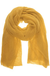 Cashmere Yellow
