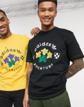 adidas Originals - T-Shirt mit Adventure- und Grafikprint in Schwarz