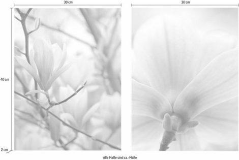 """Creativ home Bild """"Magnolien"""", (Set), 2er Set"""