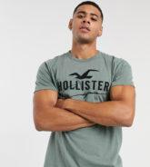 Hollister - T-Shirt mit großem Logo in verwaschenem Olivgrün