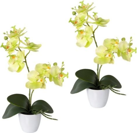 "Kunstorchidee ""Phalaenopsis"", Creativ green, Höhe 36 cm, 2er Set, im Kunststofftopf"