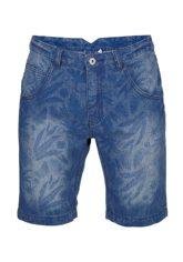 Chiemsee Lysandro - Shorts für Herren - Blau