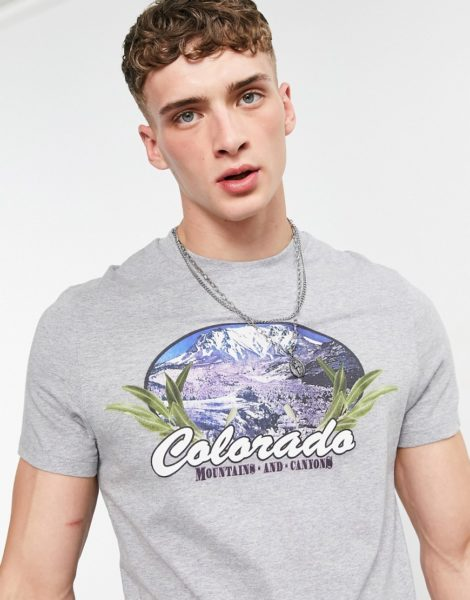 "ASOS DESIGN - T-Shirt in Kalkgrau aus Bio-Baumwolle mit ""Colorado""-Print"