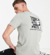 The North Face - Distorted - T-Shirt mit Logo in Grau